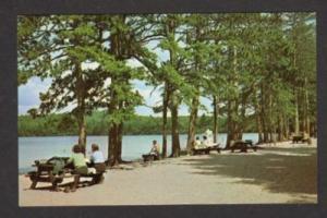 NH White Lake State Pk TAMWORTH NEW HAMPSHIRE Postcard