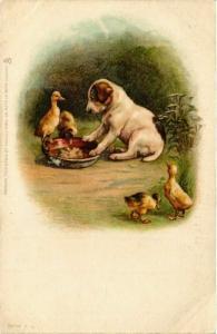 CPA Puppy & ducks DOGS (745825)