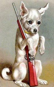 1880's DOG WITH GUN HAPPY NEW YEAR*HILDESHEIMER & FAULKNER LITHOGRAPH CARD