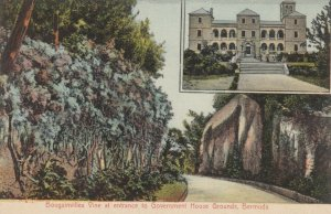 BERMUDA , 00-10s ; Government House grounds