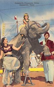 Gainesville Community Circus Gainesville, Texas USA Unused