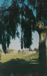 FRESNO, California, 1950-60s; Municipal Golf Course