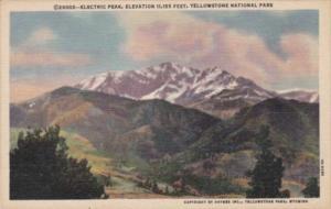 Electric Peak Yellowstone National Park Curteich