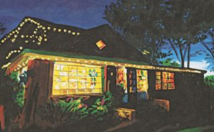 Moby Dickens Bookshop Taos New Mexico Bookstore Shop Painting Postcard