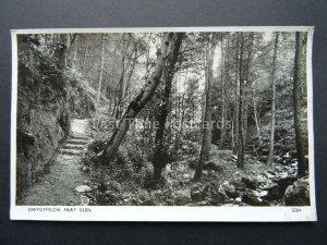 Wales near Penmaenmawr DWYGYFYLCHI Fairy Glen - Old RP Postcard by Photochrom