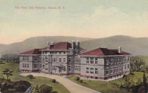 The New City Hospital - Ithaca NY, New York - pm 1914 - DB