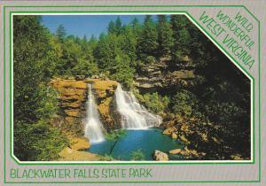 West Virginia Blackwater Falls State Park Near Davis