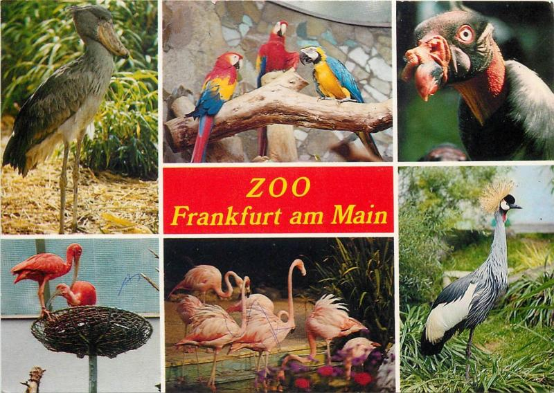 ZOO birds multi views Franfurt am Main Germany