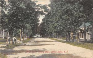 Cherry Valley New York Alden Street Looking South Antique Postcard J49659