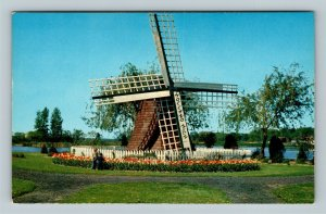 Holland MI, Tulips, Windmill Park, Chrome Michigan Postcard