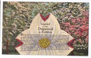 Legend of the Dogwood in Florida FL Vintage Linen