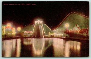 Forest Park Chicago Illinois~Amusement Park Night Lights~Leaps & Dips~VO Hammon