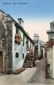 Bermuda - Shinbone Alley