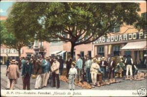 portugal, MADEIRA, Funchal, Mercado de Botas (1910s)