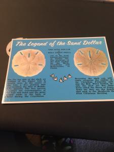 Vtg Postcard: The Legend Of The Sand Dollar