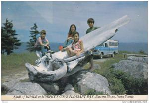 Skull of Whale, Murphy´s Cove, Children at the Skull, Classic Truck, PLEASAN...