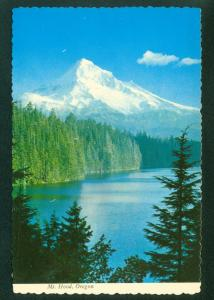 Mount Hood OREGON Trees Mountain OR MT Scene Continental Postcard