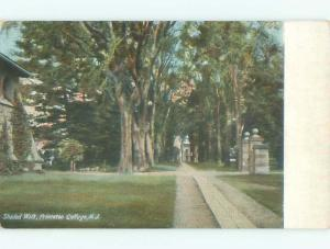 Divided-Back SHADED PATH AT PRINCETON COLLEGE Princeton New Jersey NJ Q3382