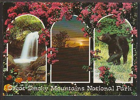 Great Smoky Mountains National Park Postcard BIN