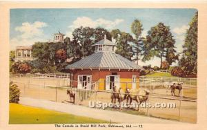 Camels, Druid Hill Park Baltimore MD Unused