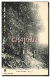 Postcard Old Boen Sous Bois has Rotagnon