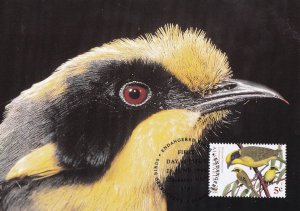 Yellow Tufted Honeyeater Australian Bird Stamp Rare WWF First Day Cover Postcard