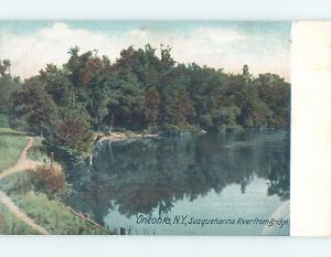 Pre-1907 RIVER SCENE Oneonta New York NY A1222