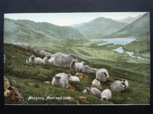 Scotland SCOTTISH SHEEP Mountain Moor & Loch - Old Postcard by Hartmann