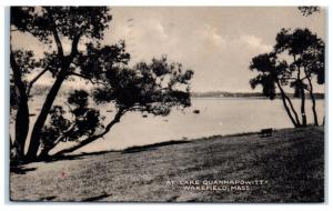 1951 At Lake Quannapowitt, Wakefield, MA Postcard