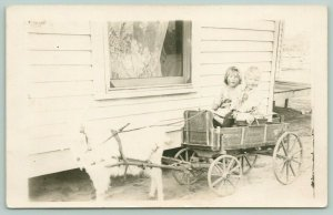 John Deere Goat Cart with 2 Little Children~Toddlers Hold Reins~c1912 RPPC