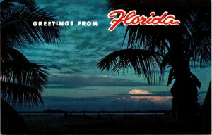Postcard Greetings From Florida Night Sunset Ocean View Palm Trees Unposted 1497