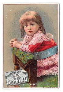Victorian Trade Card Sapolio Soap Enoch Morgans Sons Hatch Lith Co Advertising