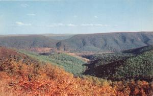 DEVIL'S SADDLE FROM ALLEGHANY MTS ON US RT 50 WEST VIRGINIA POSTCARD 1960s