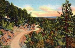 New Mexico Albuquerque Sandia Loop Road Curteich