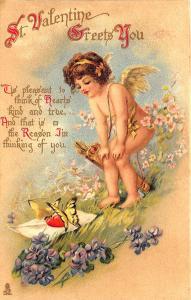 Saint Valentine's Greets You Raphael Tuck #221 Postcard