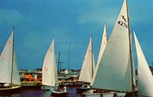 NJ - Surf City. Sailboats at Yacht Club (Sailing)