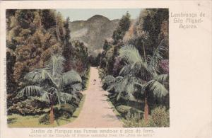 Azores , Portugal , 00-10s ; Lembranca de Sao Miguel, Jardin do Marquez nas F...
