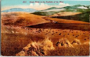 Grain Fields in the Foothills of the West Vintage Postcard N10