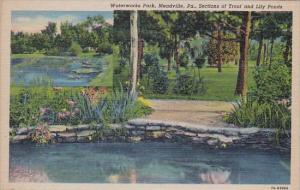 Sections Of Trout And Lily Ponds Waterworks Park Meadville Pennsylvania