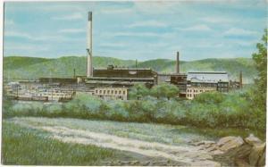 The Pittsburgh & Lake Erie Railroad Company, unused Postcard
