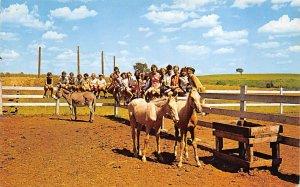 Two Palomino horses State leadership training center Junction City KS