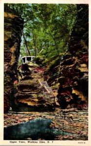 New York Watkins Glen Upper VIsta 1954 Curteich