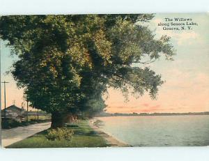 Divided-Back BUILDING & TREES AT SENECA LAKE Geneva New York NY t6150
