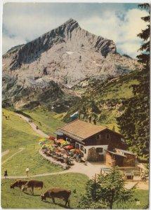 Kreuzalm m. Alpspitze 2628m, Germany, used Postcard