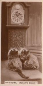 Hickory Dickory Dock Cats Grandfather Clock Cat Old RPC Cigarette Card