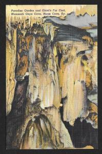 Paradise Garden Mammoth Onyx Cave Horse Cave Kentucky Unused c1938