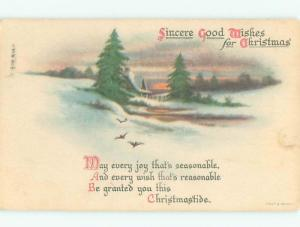 Divided-Back CHRISTMAS BIRDS SCENE Pretty Postcard W8507