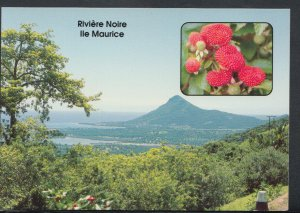 Mauritius Postcard - Riviere Noire Ile Maurice      T4166