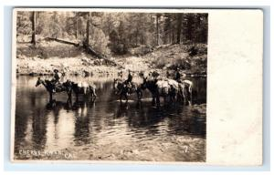 Postcard Cherry River, CA Men Crossing River on Horses 1909 RPPC H11