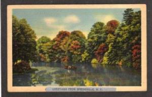 NY Greetings from SPRINGVILLE NEW YORK PC Postcard